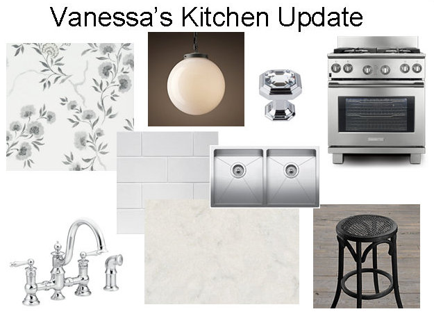 kitchen renovation, Vanessa Francis Design