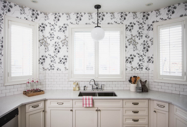 kitchen reno, Vanessa Francis Design, white cabinetry