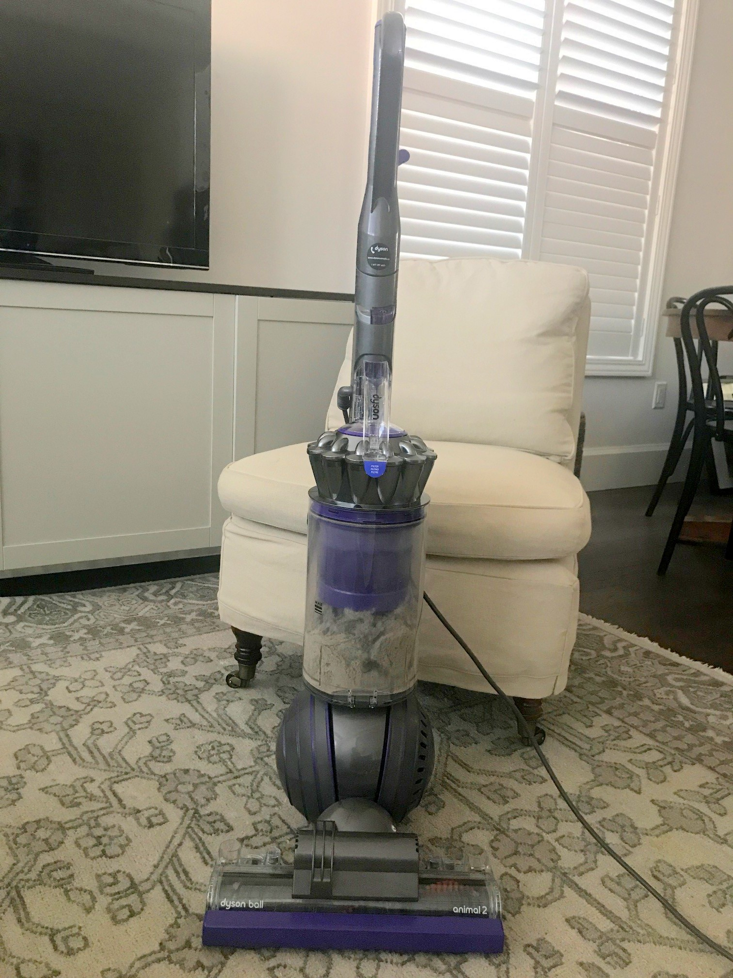 Deep Cleaning with the Dyson Ball Animal 2 Vanessa Francis Design